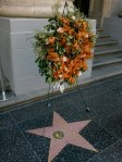 Roger Ebert's Walk of Fame star